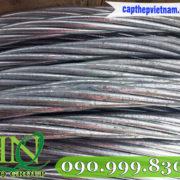 cap-cung-vien-thong-cap-thep-tk (40)